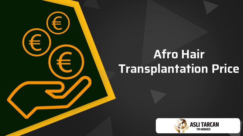Afro Hair Transplantation Price