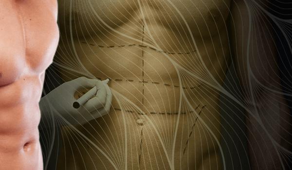 Ventricular Muscle Aesthetics